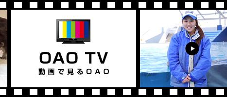 OAO TV 動画で見るOAO