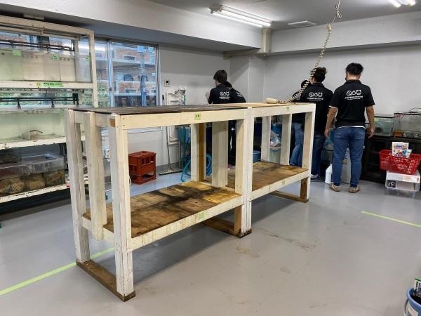 実習室の水槽3