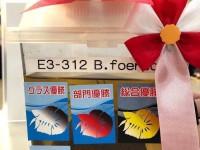 3A448FB6-1118-4860-A18C-6CAFAA6A247C