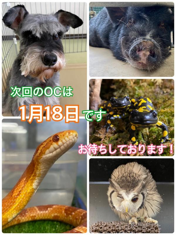 年明けブログ用_200114_0019