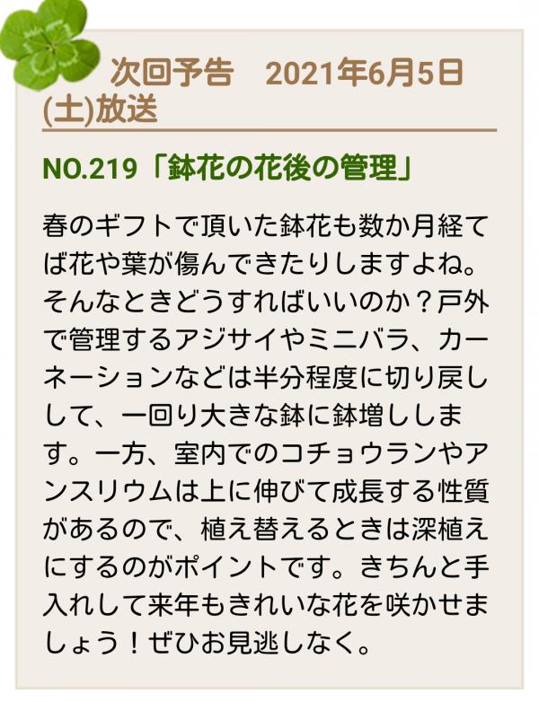 No.219番組告知