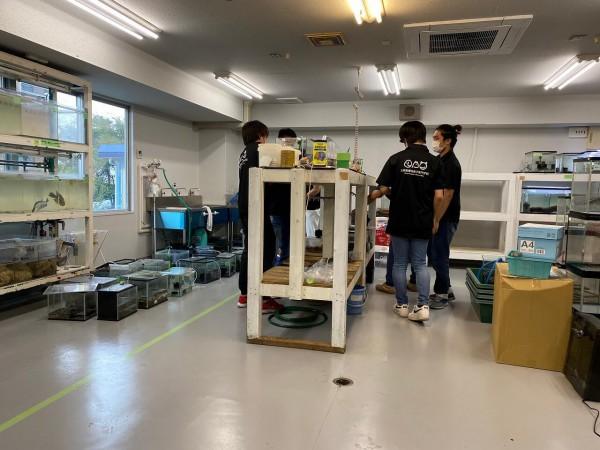 実習室の水槽1
