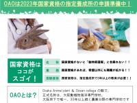 動物看護師チラシ