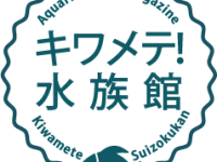 copy-kiwame1