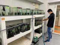 実習室の水槽2