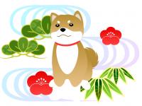 dog_7_1_1